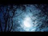 Сборка музыки для релакса и сна - Лучшие мелодии