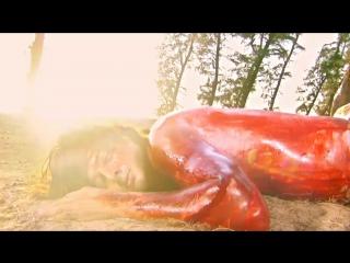 Mahabharat / Махабхарата / 2013 / Серия 202 / Песня Времени Ангараджа Карны