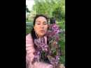 Татьяна Африкатова в Перископе 25 05 2017 Ирина Александровна хочет забрать заявление из суда