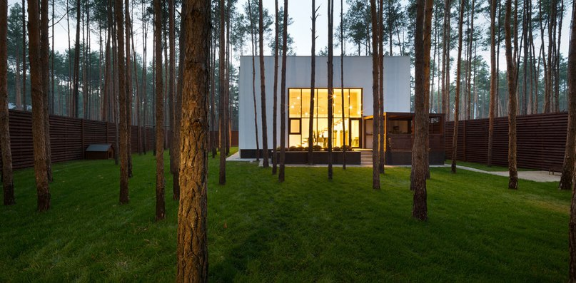 A Contemporary Cube in the Woods (Part