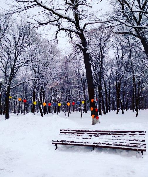 Одинокая скамейка в ожидании весны.💮  Фото: risusan7/