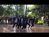 Выступление в парке им.Гагарина на дне молодежи 25.06.17г