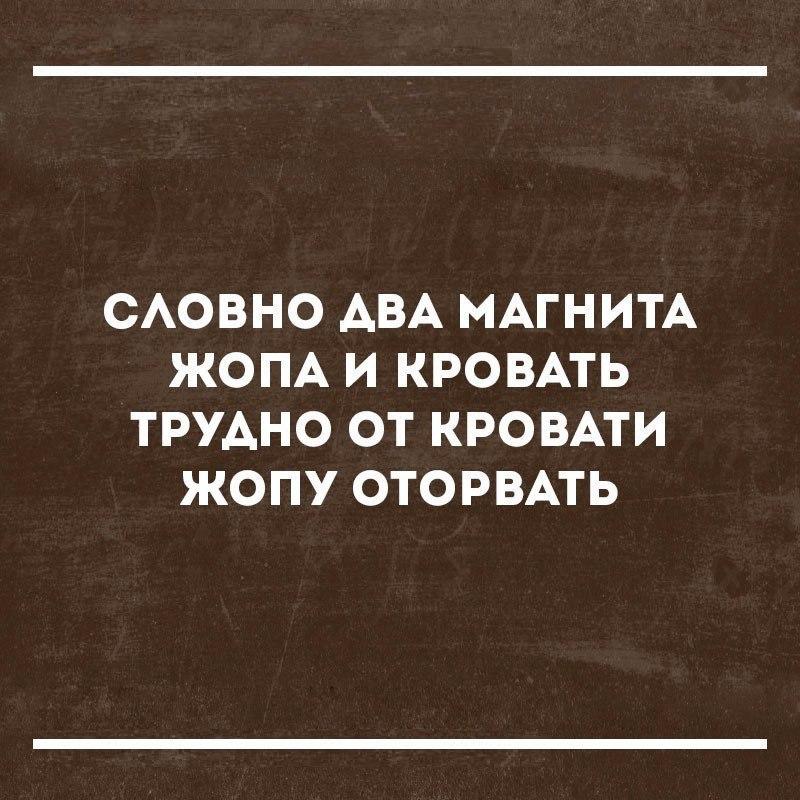 https://pp.userapi.com/c638718/v638718818/56444/BHkcOKrMaVQ.jpg