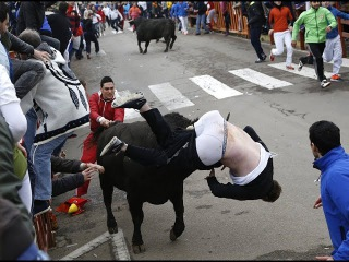 БЫК НАПАЛ НА ГАИШНИКА! The bull attacked the police!!