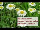 МК Вышиваем листья у разных видов ромашек Часть 1 Разживалова Наталья