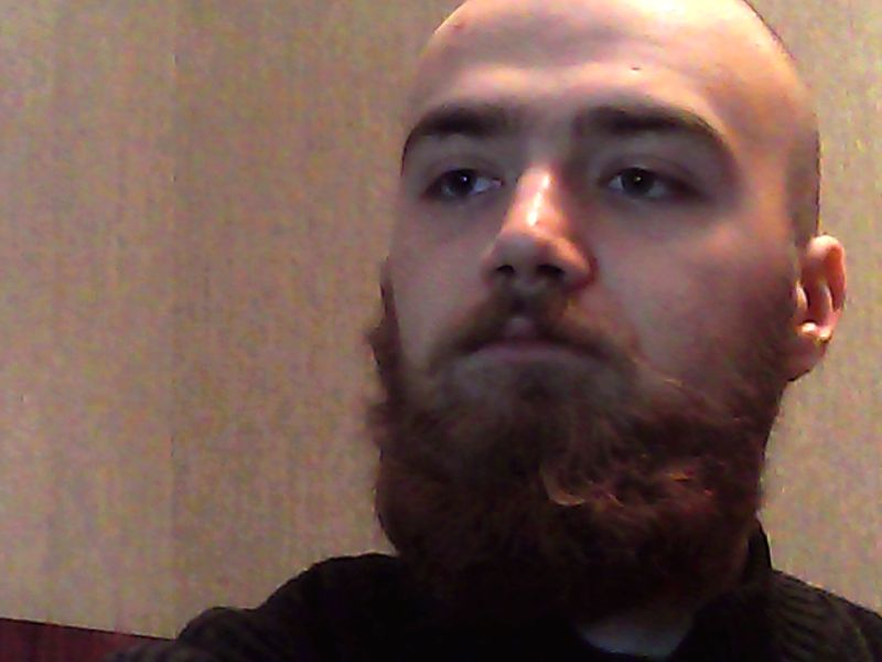 beard and bald head, beard and buzz cut