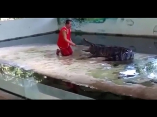 Bungee Jump Man Crocodile 103