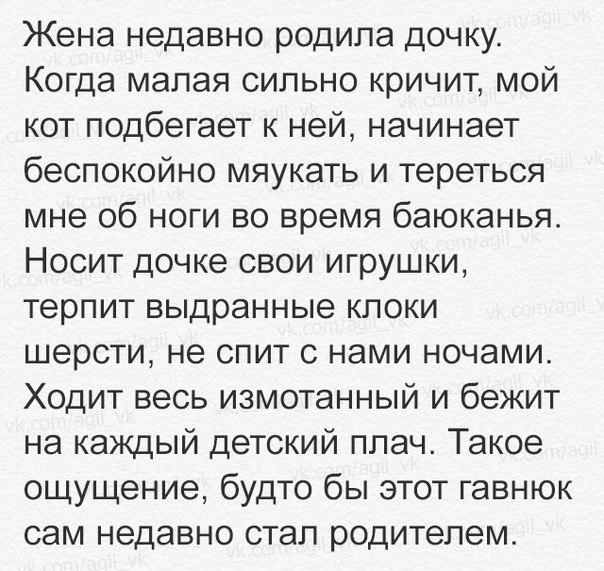 Фото №456245911 со страницы Анастасии Пеструиловой