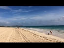 Доминикана. Пляж Баваро. Раннее утро.