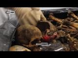 18] Обмотали головы скотчем и застрелили — детали массового расстрела жителей нацбатами ВСУ