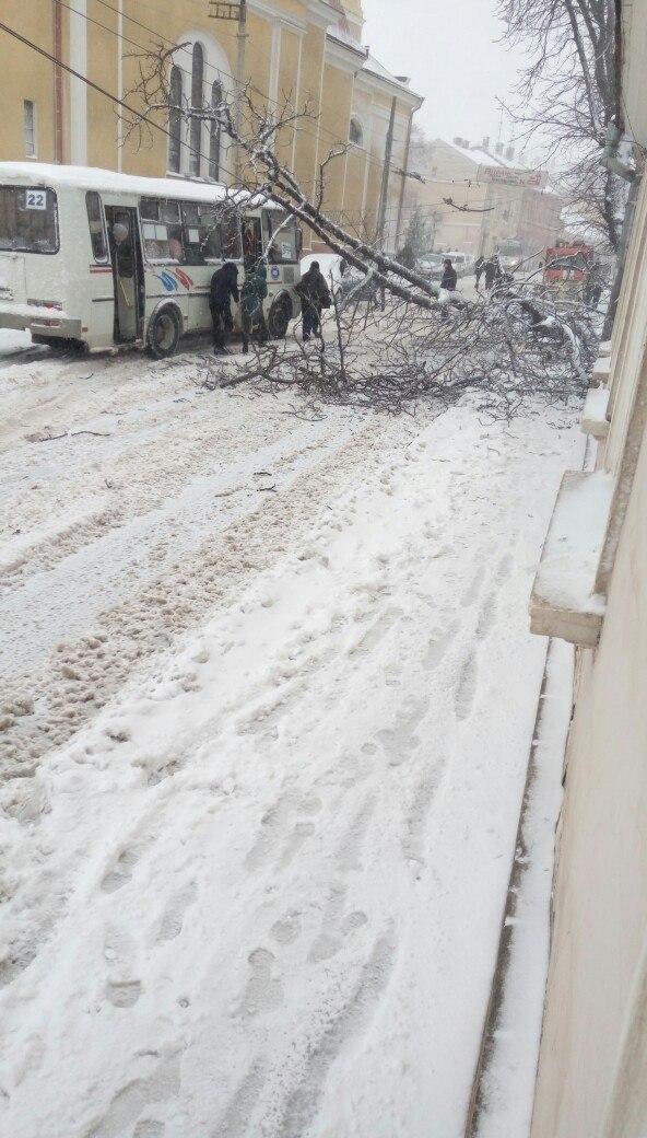 Снегопад в Украине: спасатели вытаскивают автомобили из снежных заносов и расчищают трассы, заваленные сломанными деревьями - Цензор.НЕТ 3826