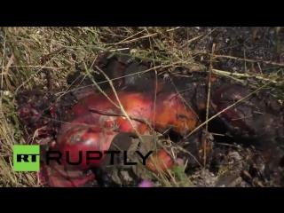 18 Сгоревшие украинские танкисты хунты. Погибли в боях 13-14 июля при попытке п