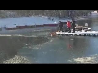 Мужчина героически спас жизнь собаке, вытащив ее из ледяного пруда в Симферополе