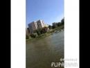 Аида Абу 110