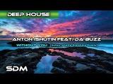 Anton Ishutin feat. Da Buzz - Without You (Anton Ishutin Sunshine Remix)