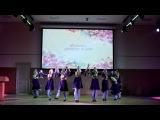 Навруз КАИ 2017 :: Танцевальный коллектив
