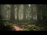 Speed Level Design - Redwood Forest - Unreal Engine 4 and World Machine 2