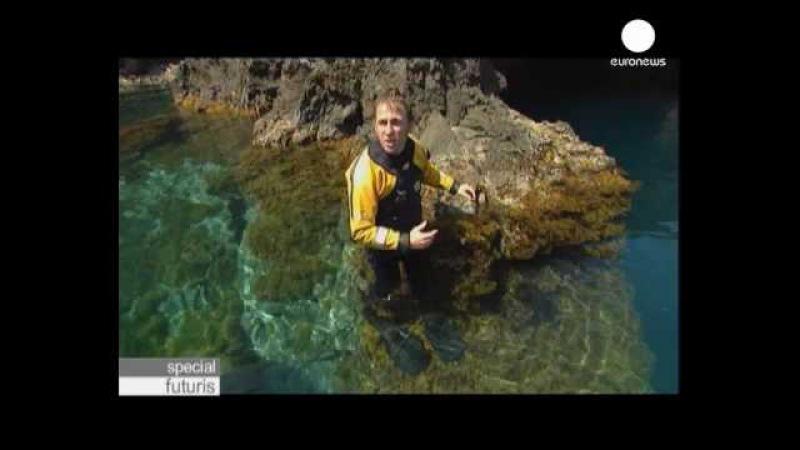 Euronews futuris Защитники мирового океана