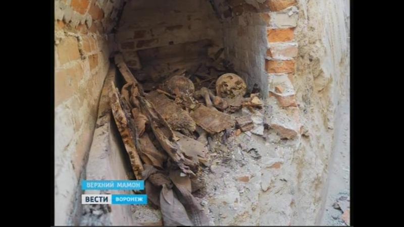 В центре Верхнего Мамона был найден старинный склеп с человеческими останками.