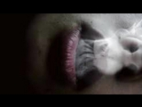 Антиреспект-Дым