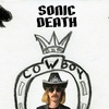 Sonic Death/ 8 января/ Саратов