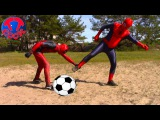 Spiderman vs Deadpool Superheroes playing with the ball  Games for children  Игры для детей