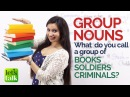 English Grammar lesson Group Nouns Collective Nouns Free English Lessons for Beginners