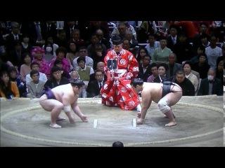 Sumo -Hatsu Basho 2017 Day 5, January 12th -大相撲初場所 2017年 5日目