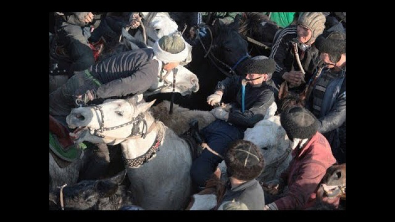 Көкпар GoPro clip buzkashi horse Кокпар 2016 pferd видео