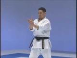 kata with bunkai _ seisan