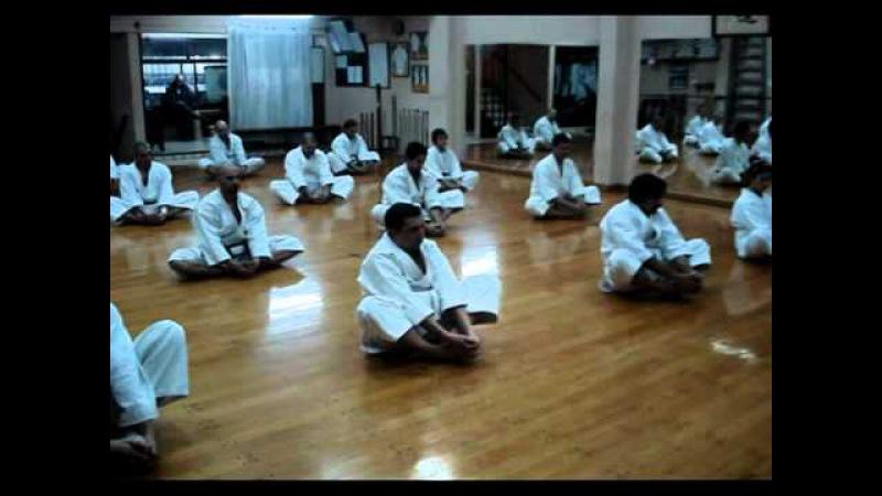 Shorin Ryu Matsubayashi - Akamine dojo - Argentina - 2010 - Practica Karate Do Cotidiana Parte 1/3