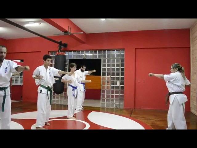 KIHON GEIKO KYOKUSHINKAI 1ªPARTE - KATHIA COSTA 1ºKYU