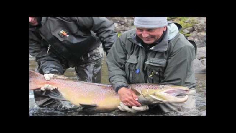 Monster 40 lb Salmon-Three Rivers-Kola Peninsula