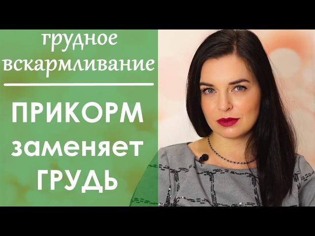 Выпуск 50. ПРИКОРМ - Нужно ли заменять кормления грудью прикормом. Грудное вскармливание