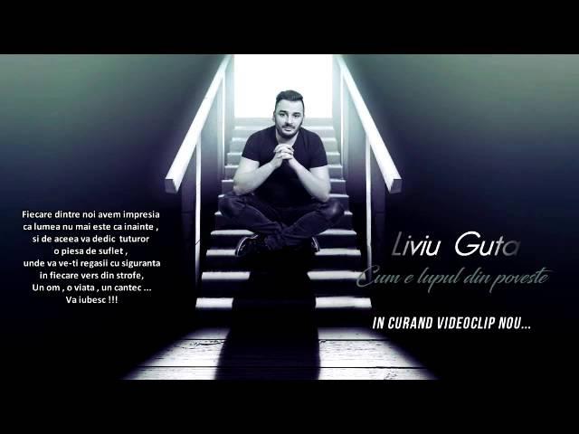 Liviu Guta - Cum e lupul din poveste ( LVG SOUND SONG)
