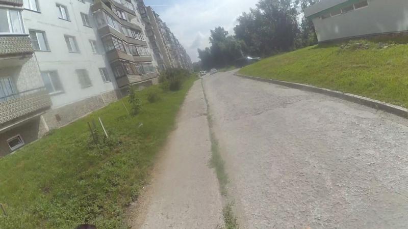 Видеоинструкция -Собака Авто Велосипед в городе часть 3