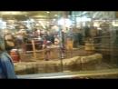 магазин для охотников