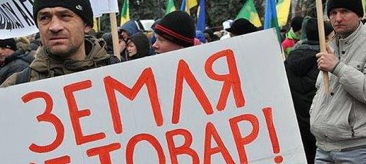 Прокуратура відсудила у громадянки Росії землю на Ковельщині - Новини -  Kowel.com.ua 748a916c7708d