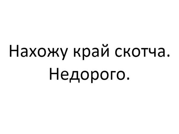 ijBnMJdp2dU.jpg