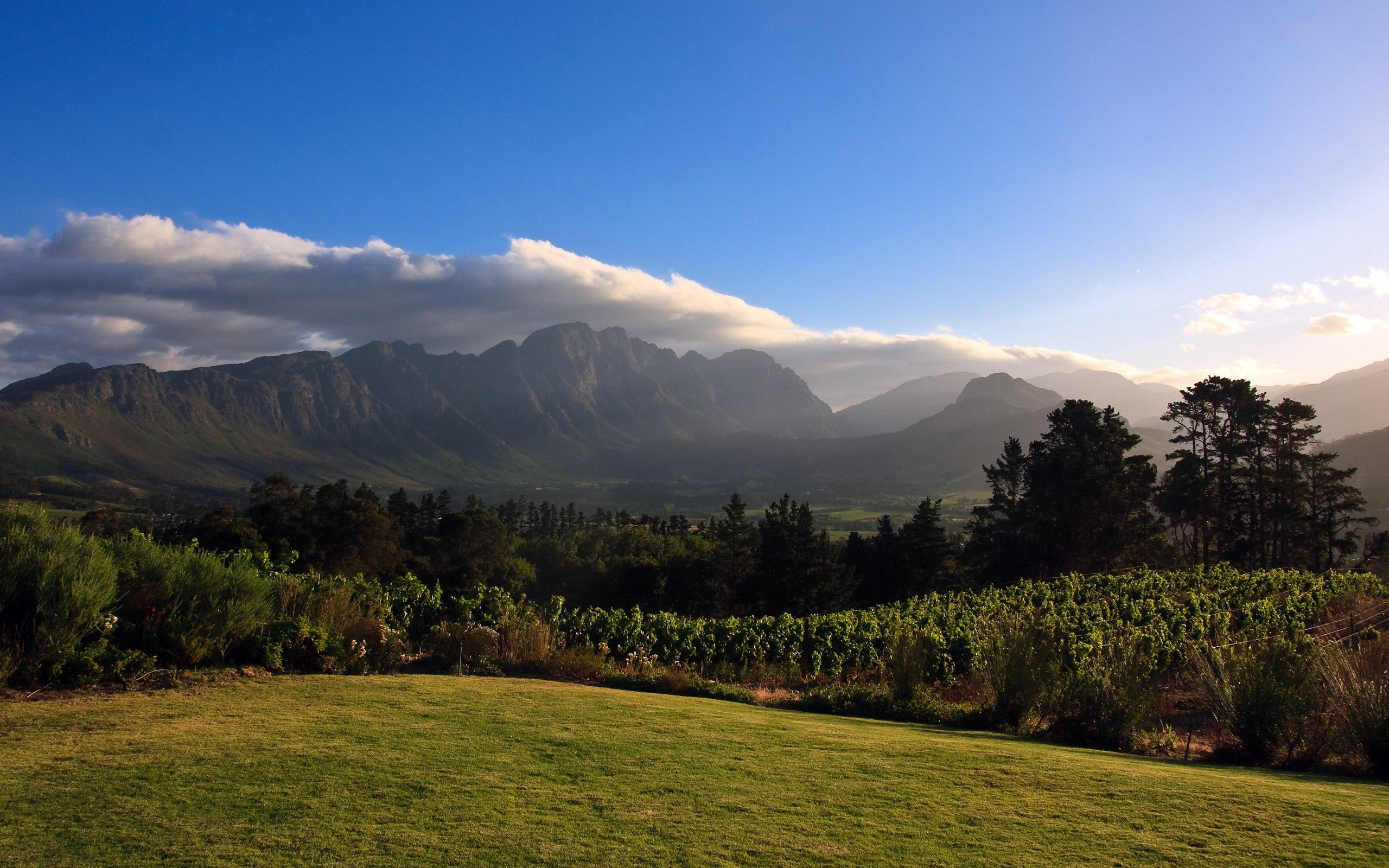 Африка виноградник горы