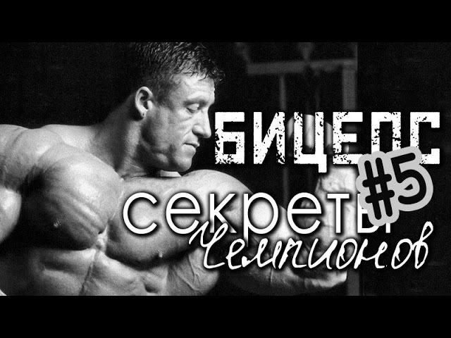 №4 ОБРАТНЫЙ ЖИМ НА БИЦЕПС - Ларри Скотт и Пол Диллет