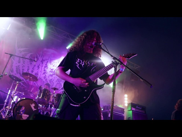 ANALEPSY - Engorged Absorption (Official Live Video)