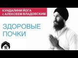 Кундалини йога с Алексеем Владовским: Здоровые почки