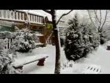 зоопарк сафари # зима#чудесно, как в сказке #моя любимая работа