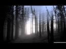 Dark Tranquillity - Auctioned
