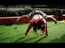 Street Workout Strongest - Eden Tarzan Zats
