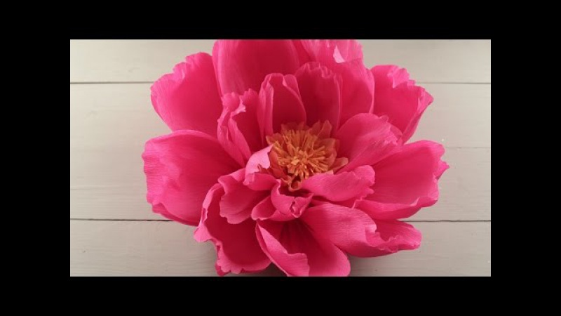 How to Make Giant Paper Flowers for a Wedding Backdrop - DIY Craft Tutorial