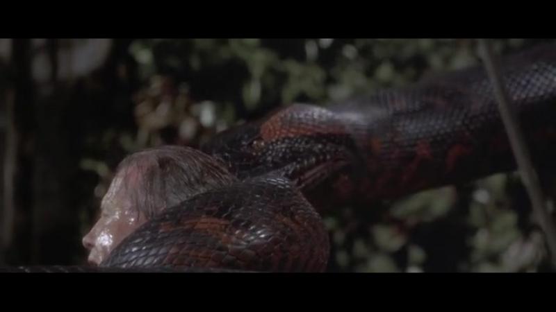 Анаконда - Anaconda ‧