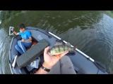 Почему не стоит брать гаджеты на рыбалку