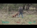 Lone Wanderer punches a kangaroo in the face to rescue his dogmeat